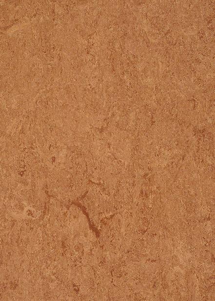 121-008-chestnut