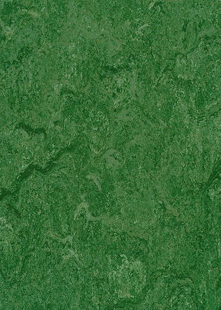 121-041-avocado-green