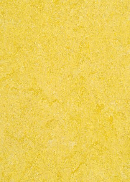121-072-golden-yellow