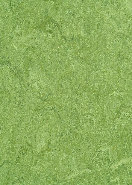 121-100-frog-green