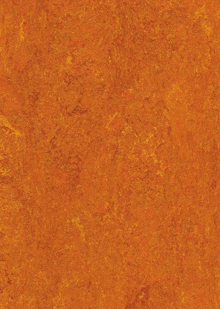 121-117-mandarin-orange