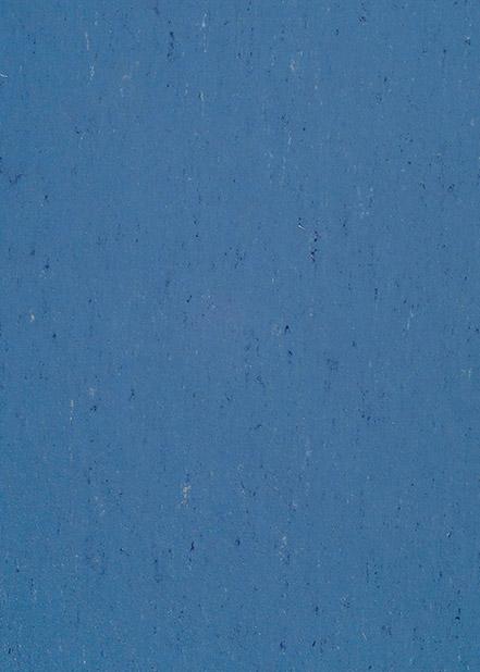 131-004-bluebird
