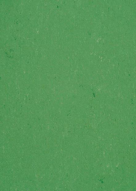 131-006-vivid-green