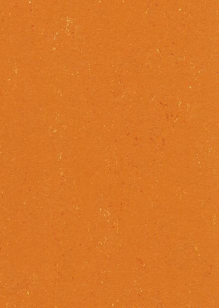 131-170-kumquat-orange