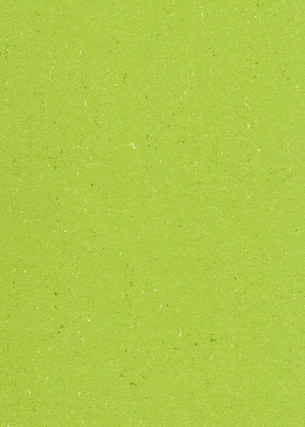 6131-132 | LIME GREEN