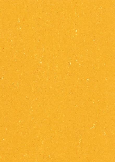 6131-171   SUNRISE ORANGE